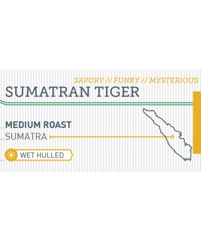 Sumatran Tiger label